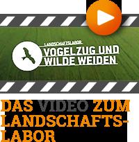 Das Video zum Landschaftslabor