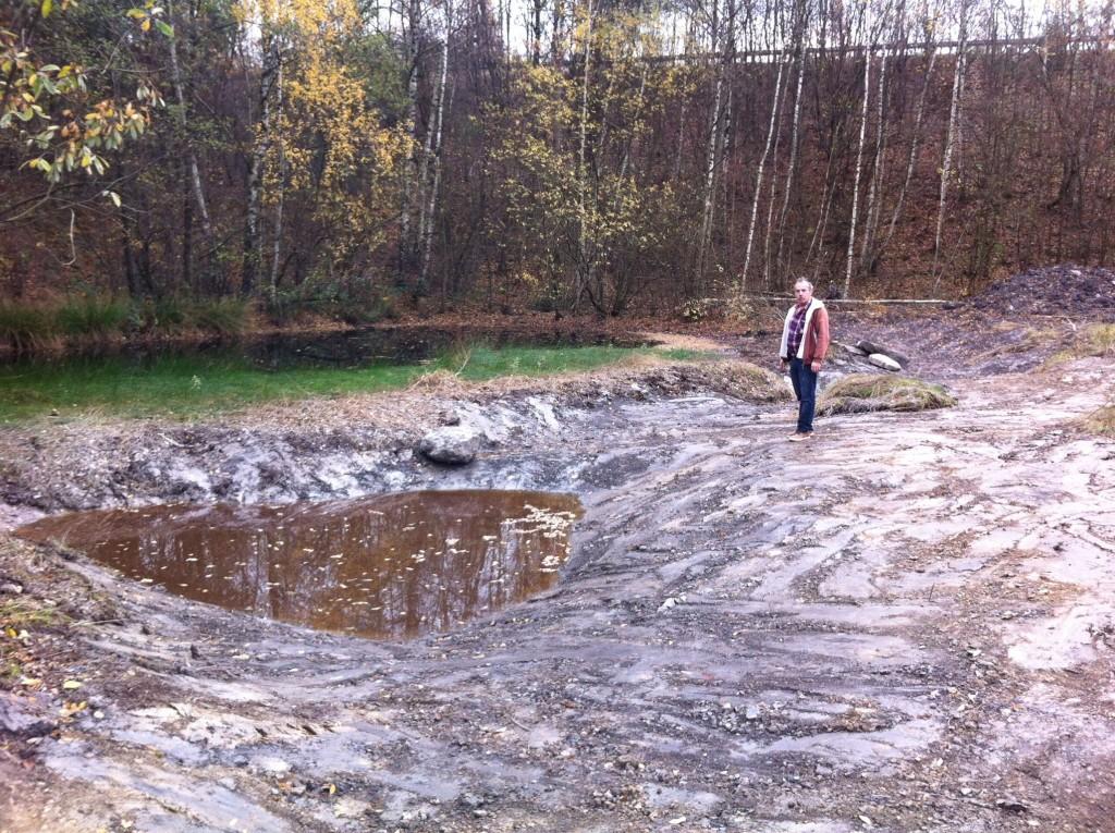 Foto 1 Alte Ziegelei, eingetieftes Gewässer
